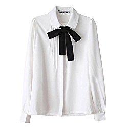 blouse 2